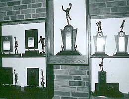 Small Trophy Display Case